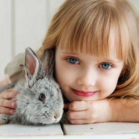 The Best Small Pets for Kids & Things You Need to Consider